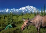 Aljaška - foto cestopis